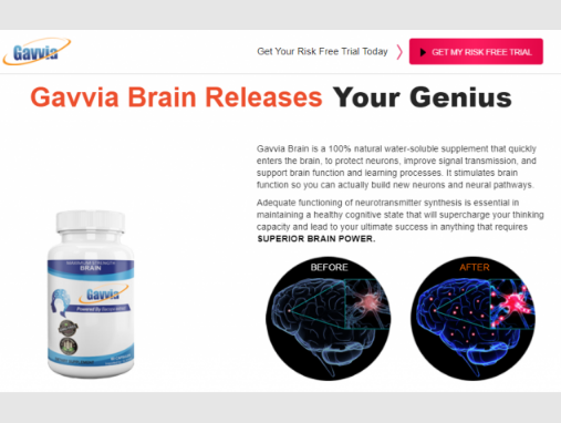 Gavvia Brain - where to buy